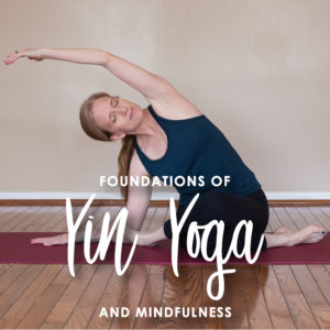 yin yoga teacher training  evolve yoga  wellness
